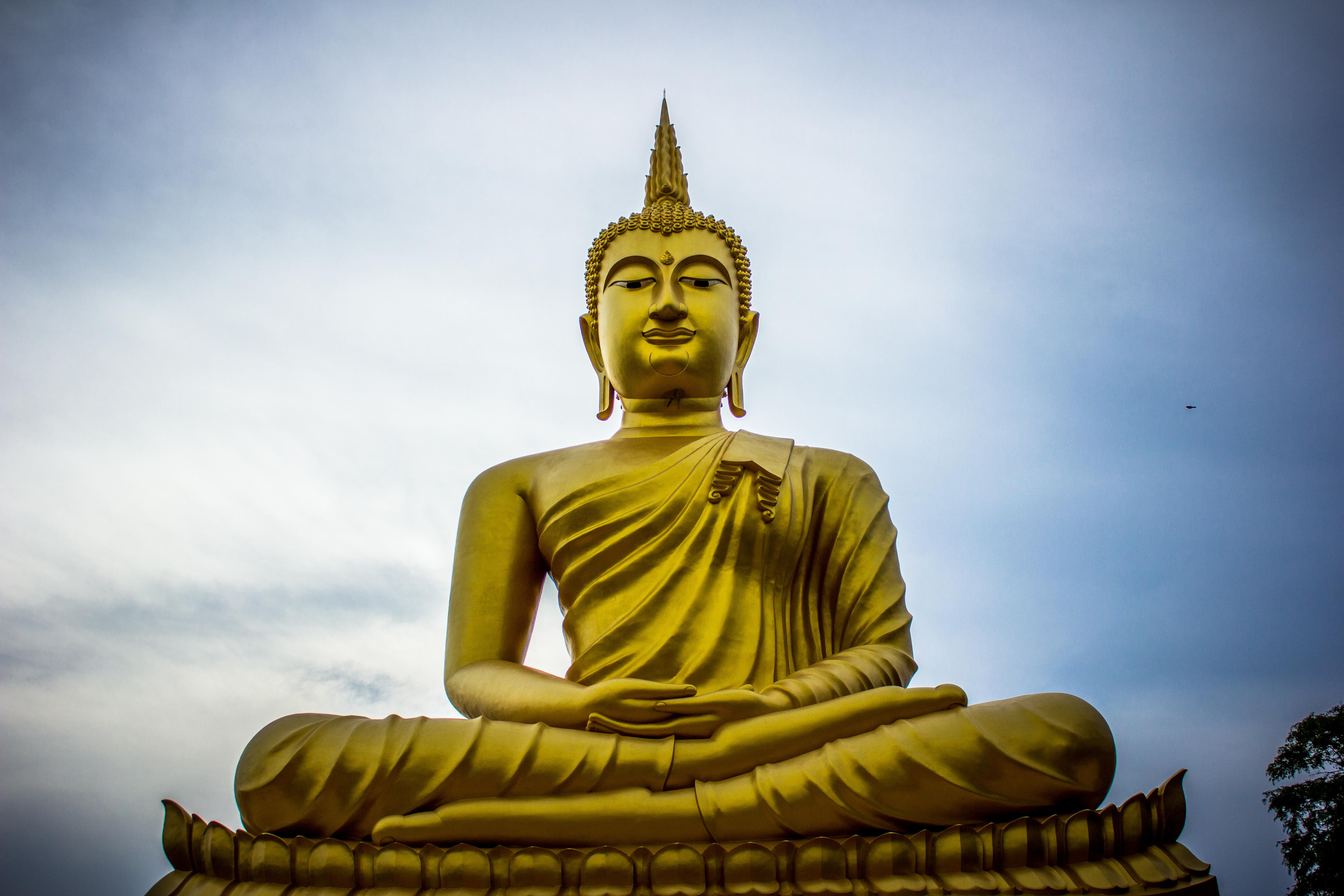 lord buddha tv live - HD1500×1000